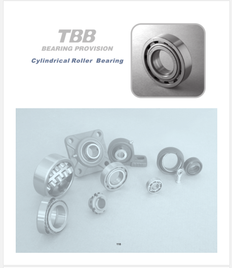 TBB Catalogue-Cylindrical Roller Bearing.pdf