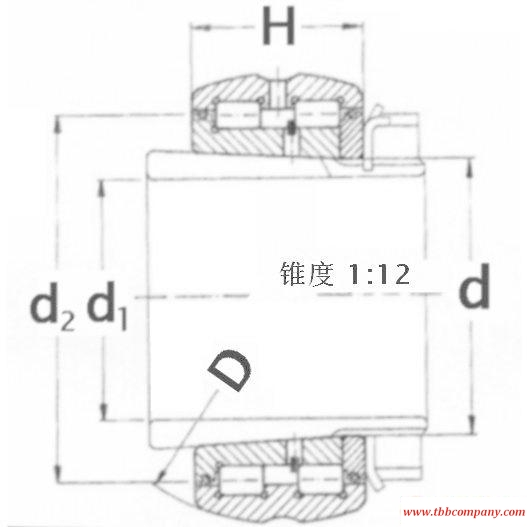SL07 019 Cylindrical roller bearing
