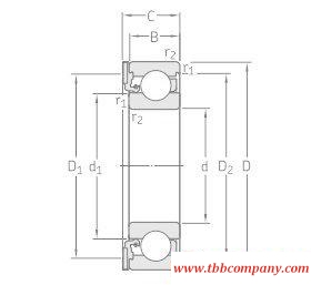 ICOS-D1B05-TN9 Oil sealed bearing units